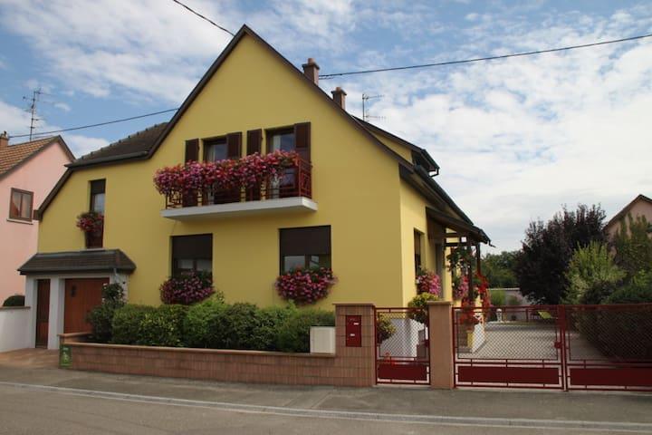 Super Gîte  3* 2/4p. prox Colmar - Oberhergheim - Appartement