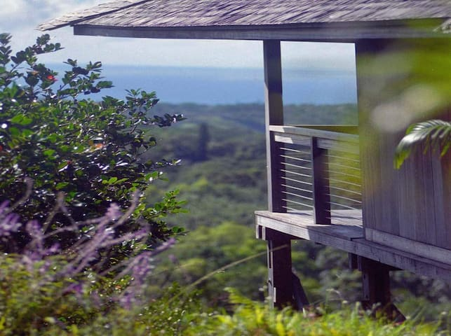 Eco-Chic Tropical Villa - Kalaheo - Dům