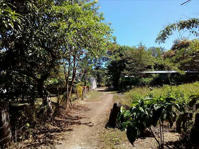 PARVA SED APTA MIHI, enjoy Ometepe! - Balque - Talo