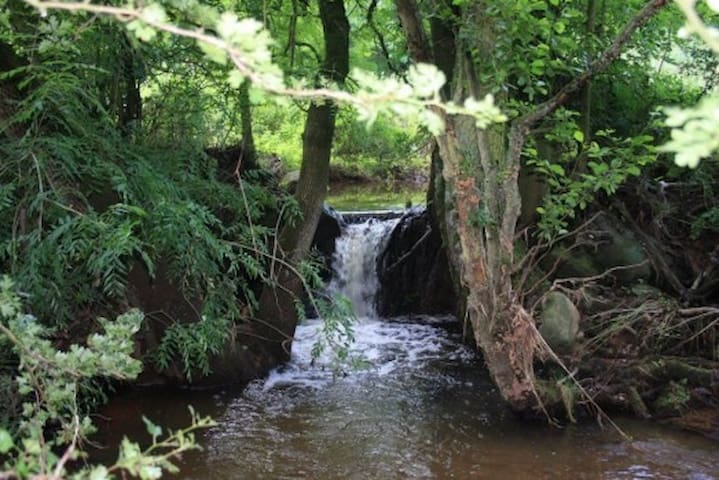The Mushroom Tunnel - Staffordshire