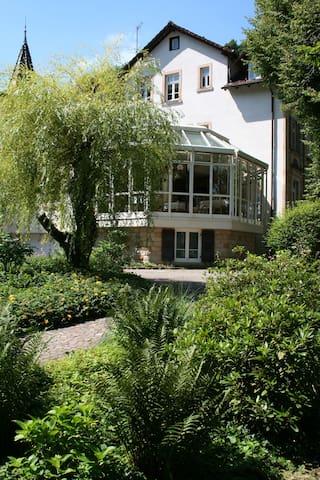 Zwischen Weinstraße u. Pfälzer Wald - Bad Bergzabern - Apartamento