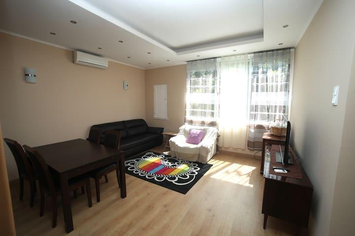 Charming House - Santarém - Santarém - Appartement