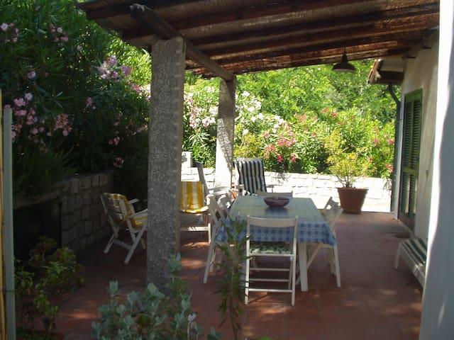 Appartamento 5 letti in villa - Zona tranquilla - Fetovaia - Daire