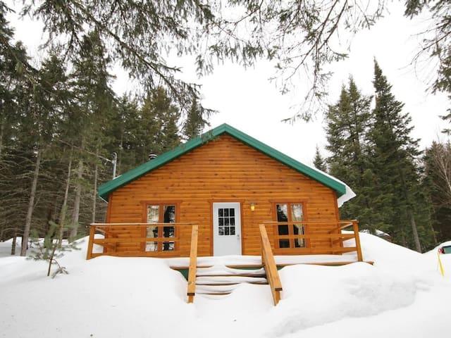 Chalet en pleine nature/Cottage in the forest - Saint-Ferréol-les-Neiges