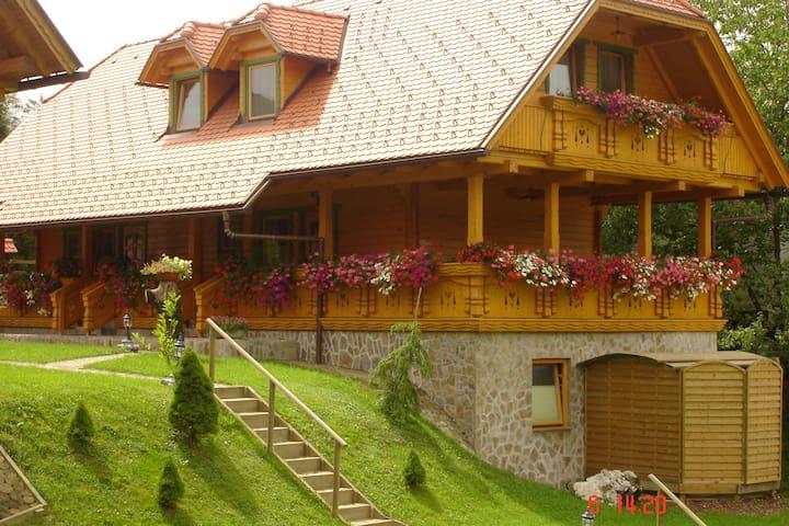 Apartments Korosec Mozirje - Orange apartment - Ljubija - Lägenhet
