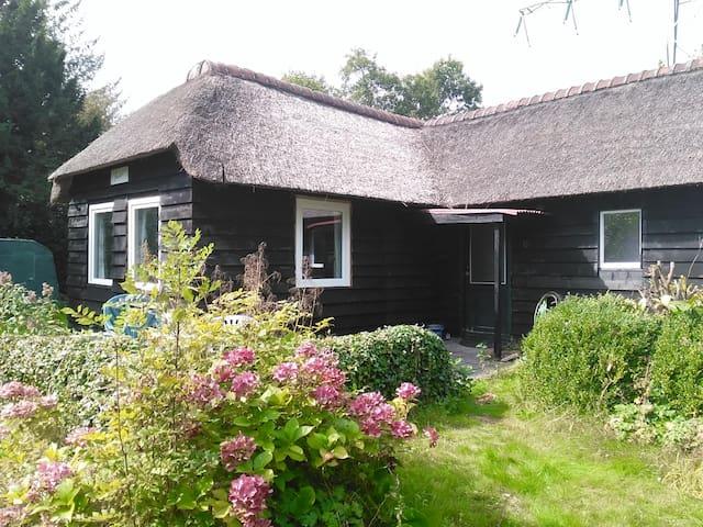Vrijstaand rietgedekt buitenhuisje in de natuur - Midlaren - Hus