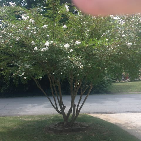 Warm and Friendly Home in Kennesaw,Ga. - Kennesaw - Hus