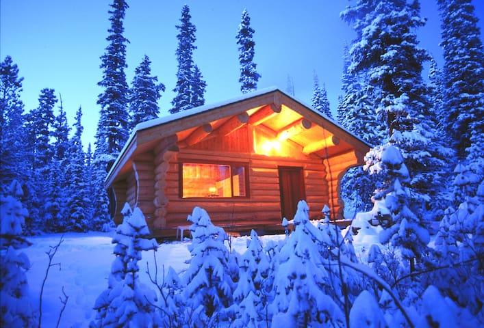 Explorer's Room @ Basecamp Cabin - Evergreen - Kabin