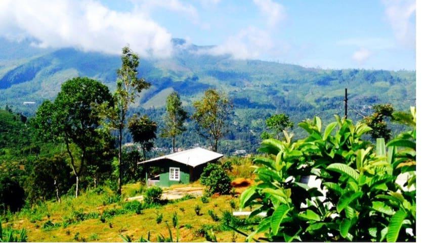 Charming 2br cottage on Tea Estate - Pundaluoya - Huis