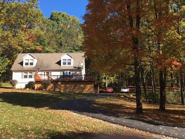 Comfortable cape in country setting - Milford - Casa