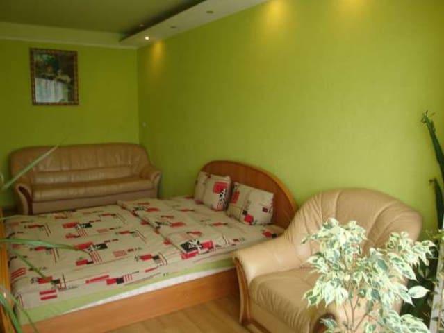 Two-bedroom apartment near IEC - Kijev