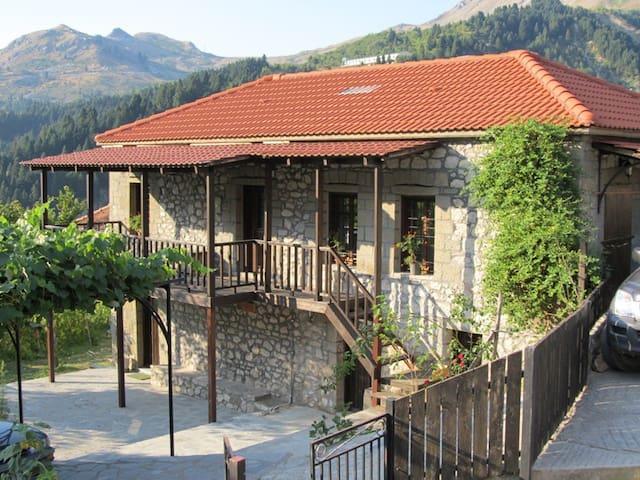 Μονοκατοικία στα Θεοδώριανα Άρτας - Theodoriana