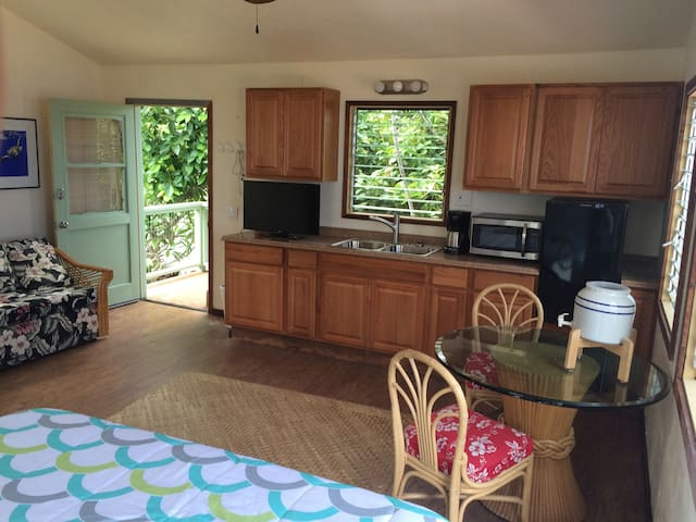 STUDIO APARTMENT WITH PRIVATE BATH AND KITCHENETTE - Captain Cook