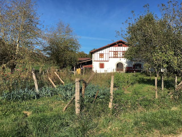 Etxeberria : Gîte à la ferme à Saint Esteben - Hélette - Leilighet