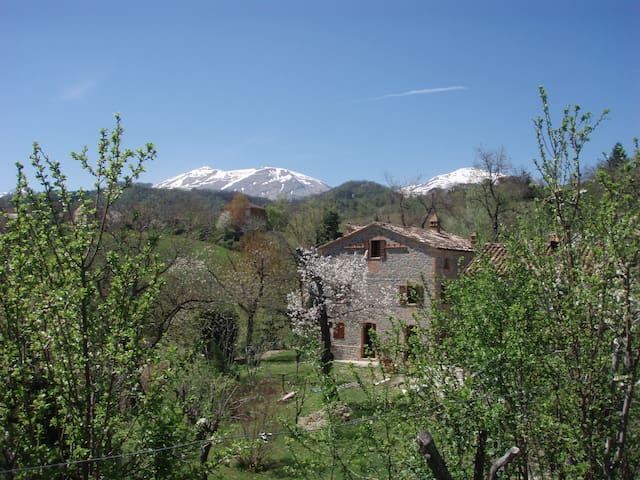 Immersed in nature, mountain views - Montefortino - Lakás