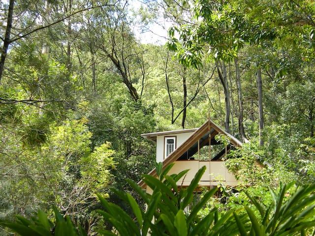 Glamping in 'The TreeHouse'. - Crabbes Creek - Casa en un árbol