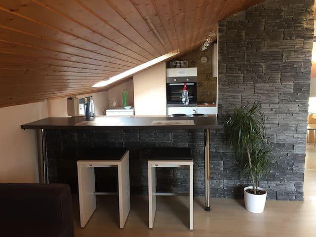 A8 Göppingen Hattenhofen 5+1 +WiFi - Hattenhofen - Appartement