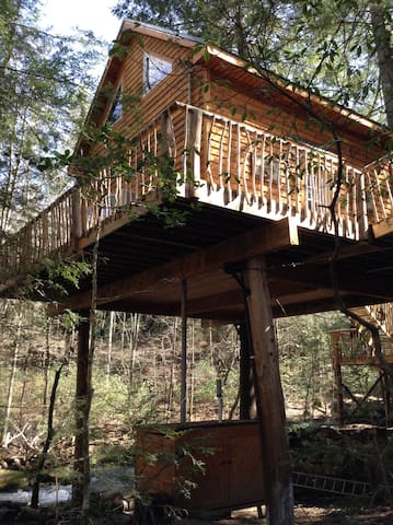 Morrison's Treehouse Getaway - Pikeville - Boomhut