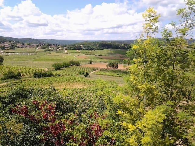 2 pièces,dans villa au calme, vue sur les vignes - Cornillon - Daire