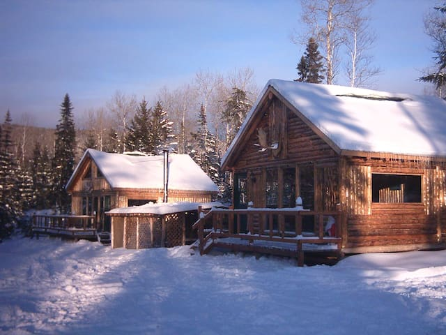 Ma Cabane au Québec - Saint-David-de-Falardeau - Dağ Evi