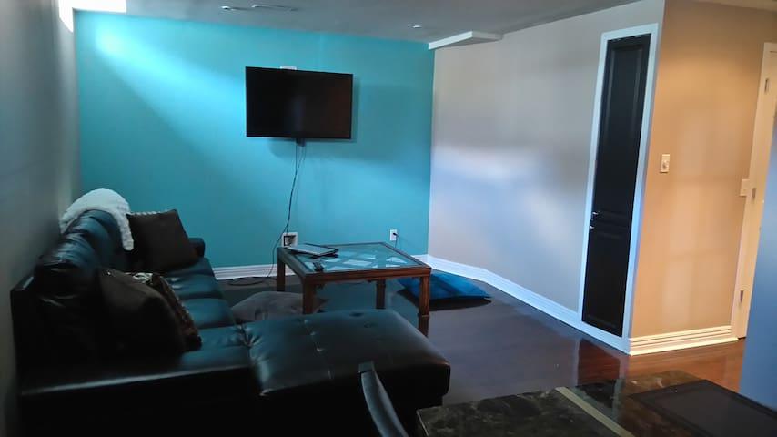 Spacious, clean & private 1 bedroom basement apt. - Milton - Huoneisto