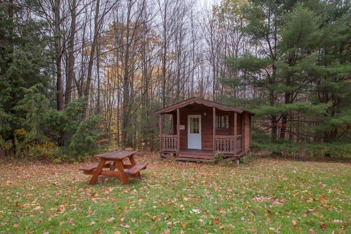 Log Cabin 2 w/access to 20 miles hiking trails - Freeville - Houten huisje