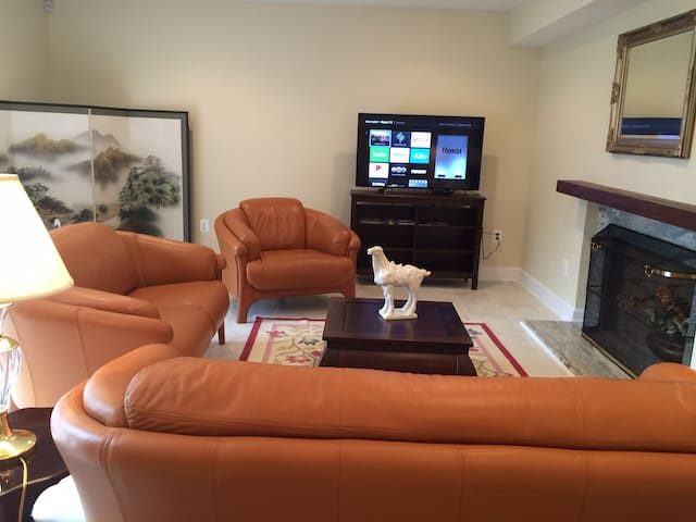 Upscale, comfortable, safe retreat close to DC. - Bethesda - Appartement