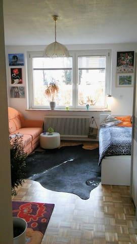 Salzburg zentral:  Einzelzimmer - Salzburg