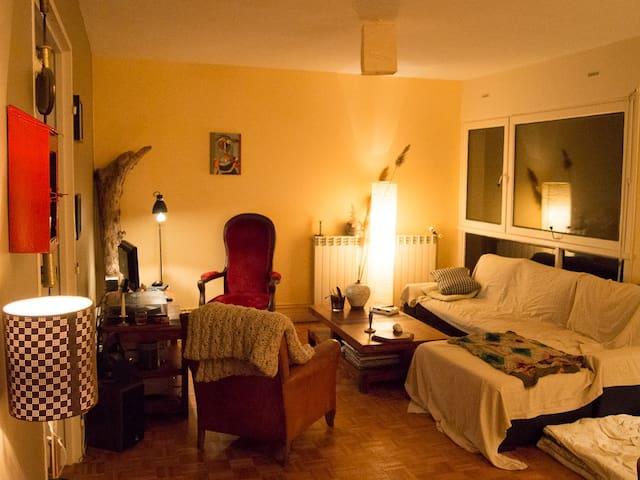 Merveilleux canapé-lit! - Soissons - Appartement