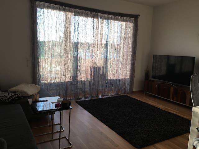 Gemütliche 2-Zimmer Whg,20qm Balkon - Schwabach - Apartmen
