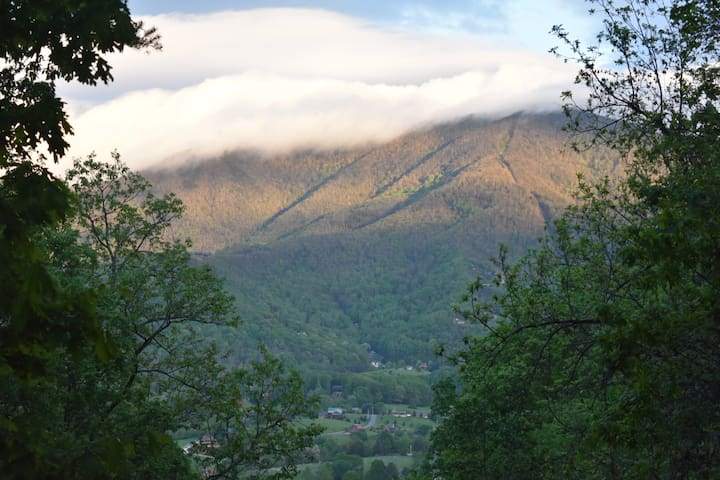 Sleep in the Clouds Mountain Cabin - NO FEES! - Sevierville - Cabane