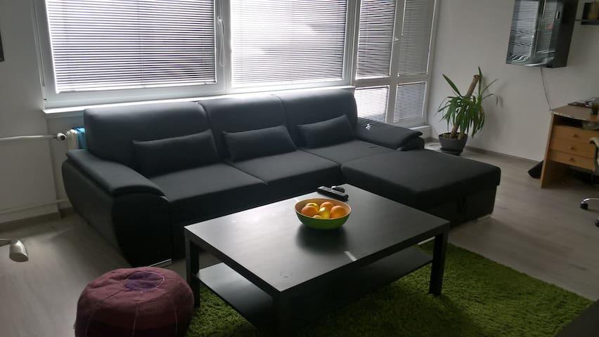 Comfortable sofa in minimalistic flat,peacful area - Frýdek-Místek - Lägenhet
