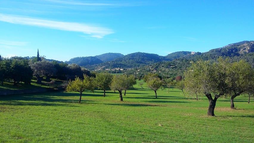 Serra de Tramuntana, lugar idílico - Suite + baño - Mancor de la Vall - Apartemen