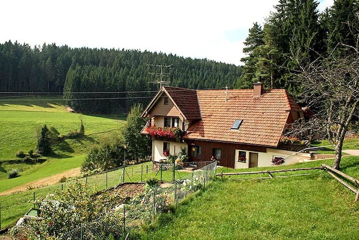 Complete flat in the middle of the Black Forest! - Schramberg - Appartement