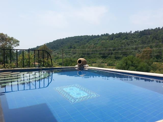 Charming Quaint Turkish Villa &Pool - Çıtlık Köyü - Villa