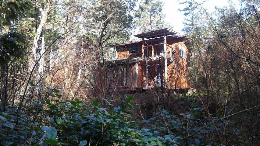 Rustic off-grid gulf island cabin - Gabriola