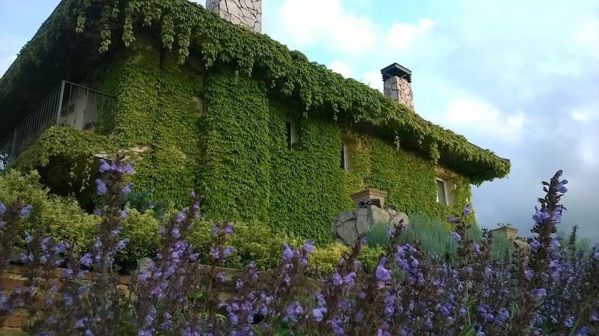 Casa en entorno natural en el centro de Asturias. - Comarca del Nora - Huis