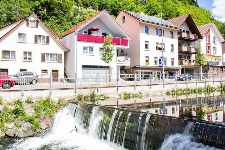 NEU Ferienwohnung Buchkopfblick, ideale Lage - Oppenau - 公寓