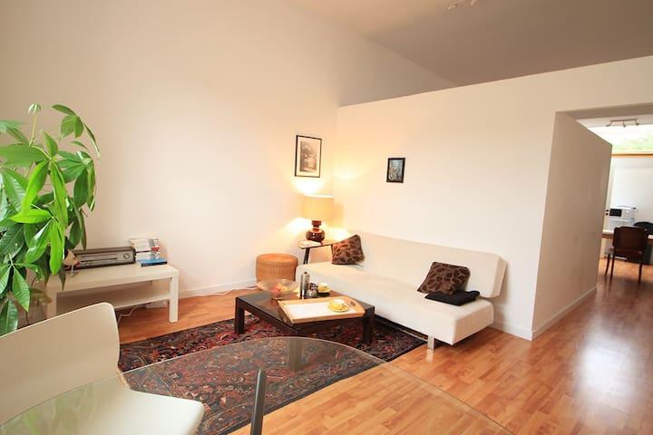 Bright and quiet apartment - Schaarbeek - Leilighet