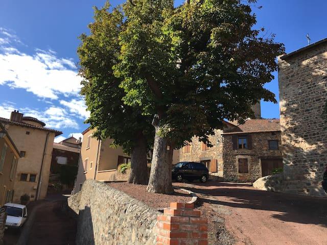 maison de charme dans village medieval - Saint-Jean-Saint-Maurice-sur-Loire - Huis