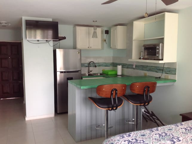 Breezy Cozy City Studio - Kingston - Apartamento