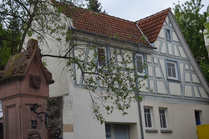 Lovingly updated historic house (300+ years old) - Zwingenberg - Huis
