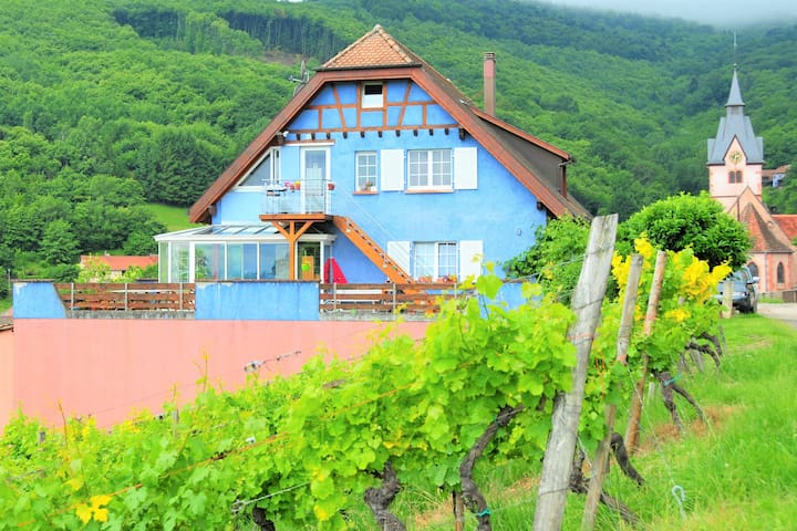 Alsace Winemaker home for wine and nature lovers - Reichsfeld - Stadswoning
