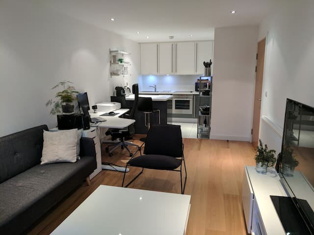 Modern apartment ideal with great transport links - Londra - Daire