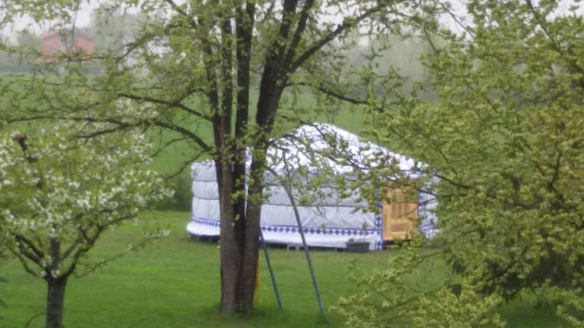 Una notte in yurta, immersa nel verde della Natura - Modena