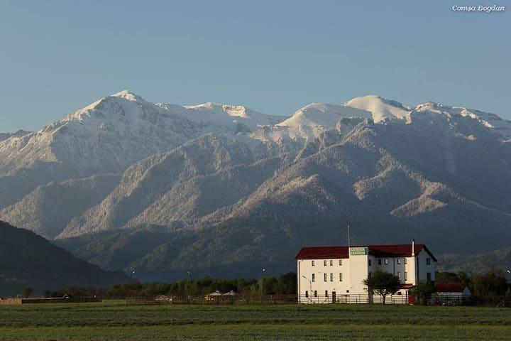 Comfort & quality with amazing mountain views - Râșnov - Oda + Kahvaltı