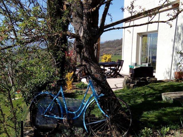 """""""au vélo bleu"""" - Flat - Huis"""