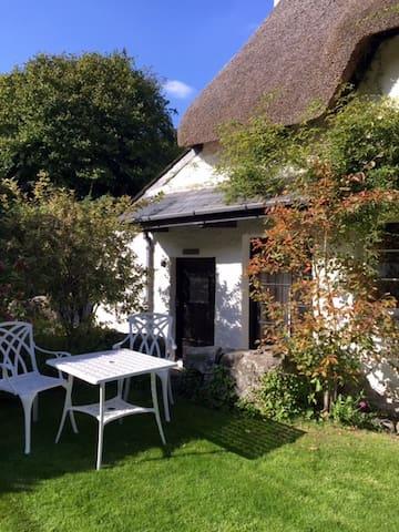 Hayloft hideaway in heart of Devon - Lower Combe - Daire