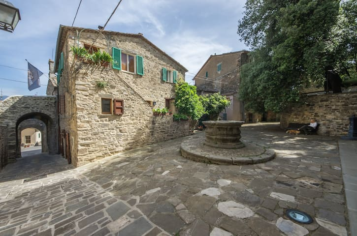 The Ancient Well House in Tuscany (3bdr & WIFI) - Castel del Piano - Huis