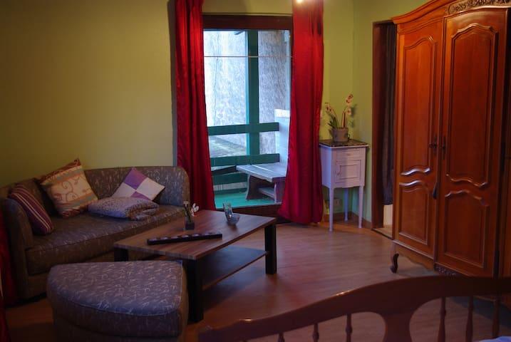 Appartement Brouvelieures - Brouvelieures - Apartament
